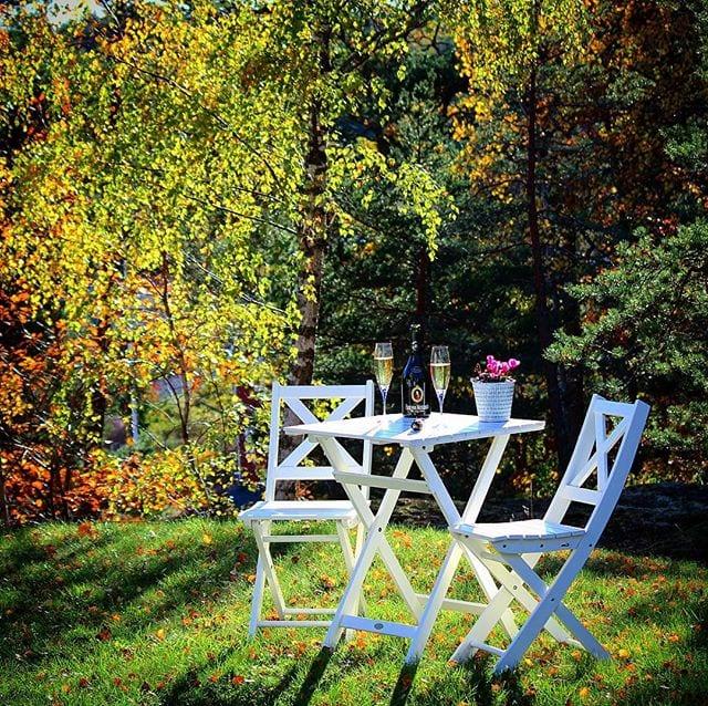 Jag älskar att sitta på en av mina favoritplatser, sippandes bubbel och bara njuta av höstens färgskiftningar.  _______________ ? Fürst von Metternich Riesling Sekt Trocken. ? nr 77962; 89 kr.  100% Riesling.  1,7 g/100 mL (Extra Dry). ? Mycket läskande doft med starka inslag av päron, mandel och äpplen.  Torr smak med relativt hög sötma, inslag av gula äpplen, persika, honungsmelon och päron.  Ett rätt spännande bubbel som med fördel kan kombineras med Asiatiska anrättningar. Den är vackert ljusgul med väldigt livliga bubblor. Både doften och smaken är frisk och fruktig. Den har en viss sötma och aromer av äpple, melon, persika samt päron. ? 8,0 (mycket bra Sekt)! _______________ @fuerst_von_metternich @henkellalkoholfri @orrefors ?