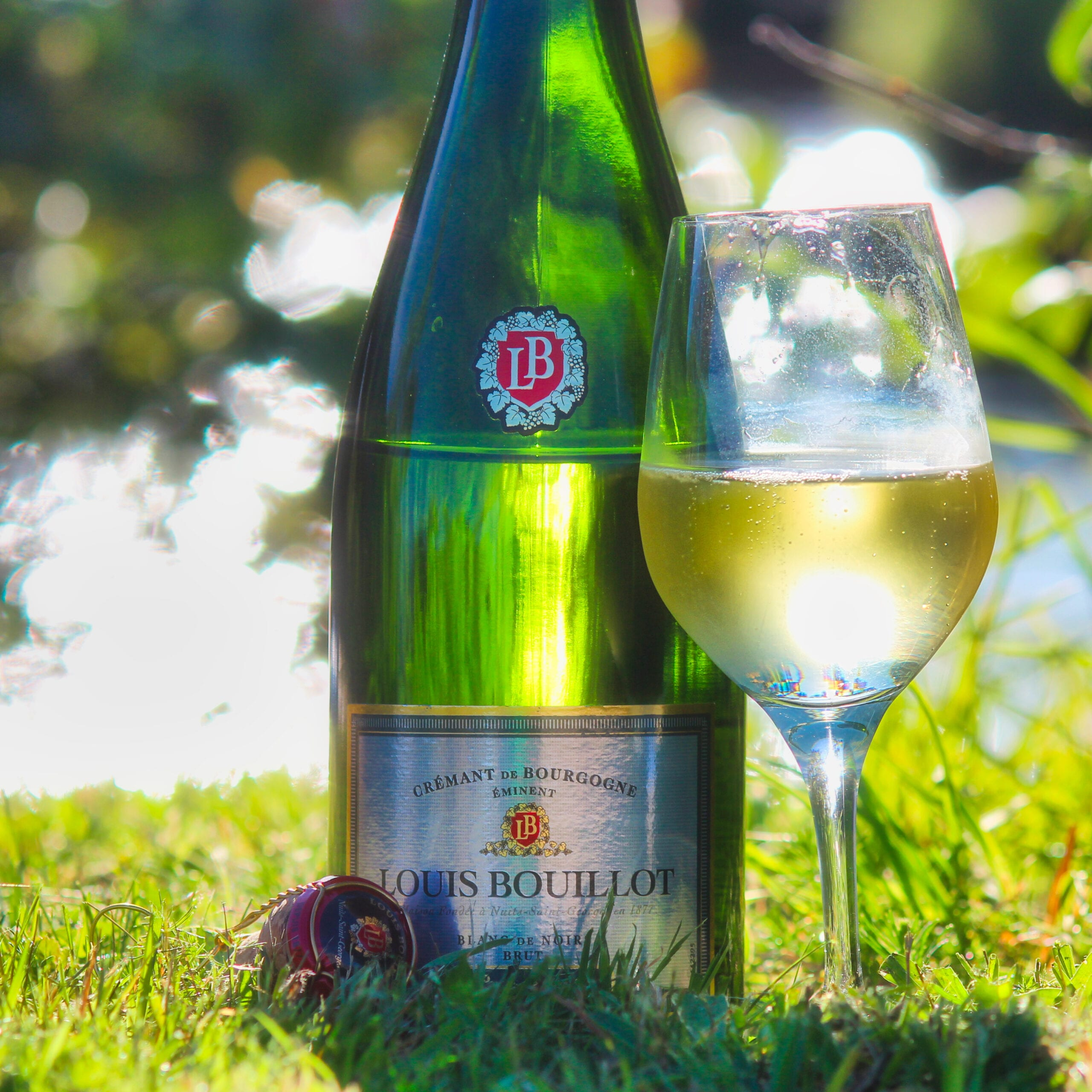 Louis Bouillot Cremant de Bourgogne Blanc de Noirs (provad 2020)